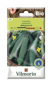 Acheter Graines Concombre Marketmore 76