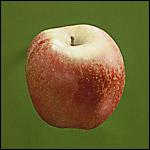 Acheter Pommes