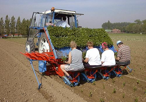 Acheter Planteuse Grande vitesse