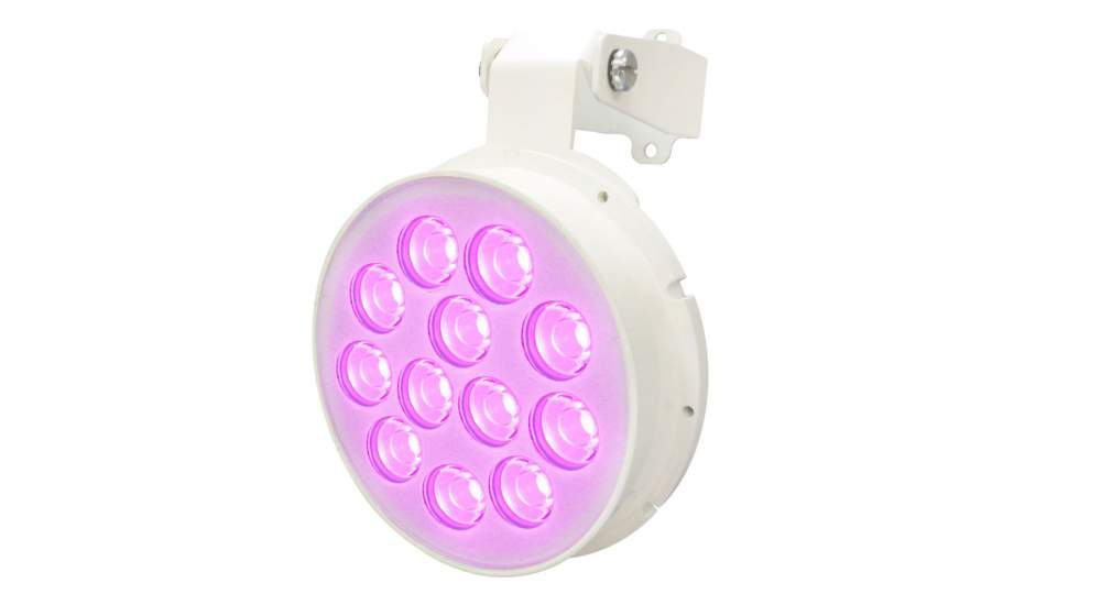 Acheter Bulb led LT-CBPOL-111