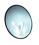 Acheter Miroir antivol dia 45cm avec fixation. Sécurité