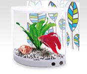 Acheter Aquarium