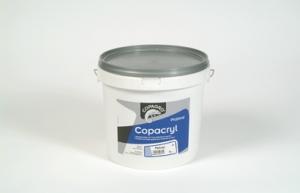 Acheter Peinture acrylique Copacryl plafond 5l CCRYLPLAF5LME