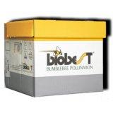 Acheter Biological pollination: Bumblebees: Mini-Hive