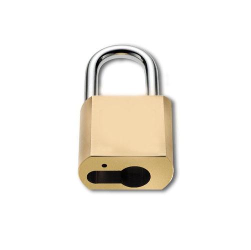 Acheter Padlocks Benco padlocks for profile cylinders