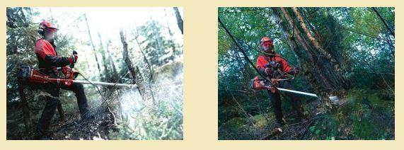 Acheter Débroussailleuses forestières