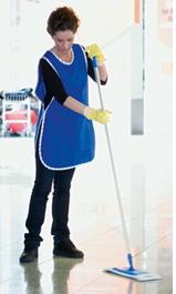 Acheter Nettoyants pour l'entreprises d'entretien et de nettoyage
