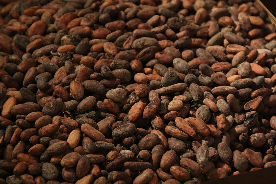 Acheter Cocoa beans
