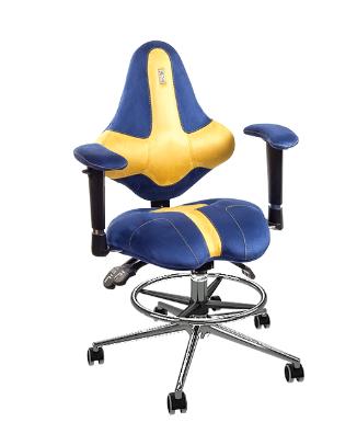 Acheter Fauteuil ergonomique