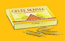 Acheter Gelée Royale 10 ampulles