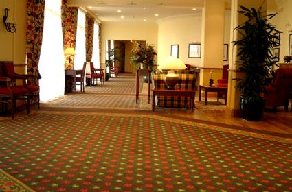 Acheter Hospitality/Leisure Carpets