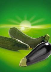 Légumes d' été