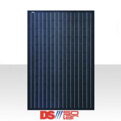 Panneau monocristallin : DS Solar by CSG 250W