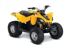 Quad Can-Am DS 90