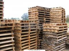 Pallets for export