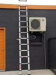 Ladder Telescopic 13 Step Action