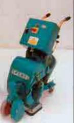 Polishing machines for parquet