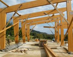 Glued Wood - Structural glued laminated timber