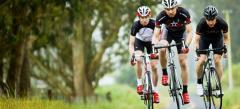 Vélo Trek Sport Route