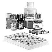 Test system Wampole® Mycoplasma IgG ELISA