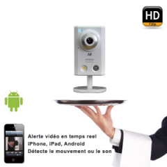 Caméra IP Filaire IVS megapixel AVN80X
