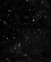 Marbre noir de Dinant