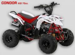 Quad pour enfant Lem Condor kid 50cc