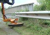Rail Mower Sgd 650