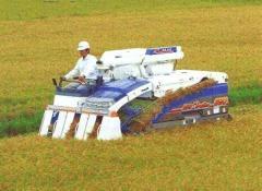 Combine Harvester HF