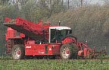 Chicory harvesters