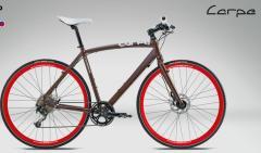 Vélo Street Carpe H20