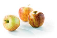 Fruits à pépins