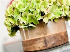 Сorbeilles de fleurs