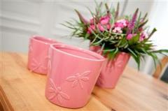 Pots pour les fleurs