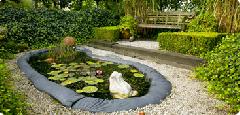 Un étang dans votre jardin