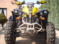 Quad Can-am Renegade 800
