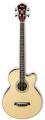 Guitare basse